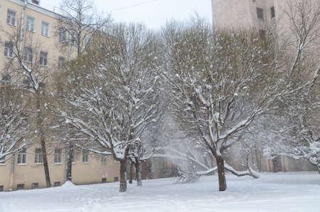 Snow fell in the city in winter. Reklamní fotografie