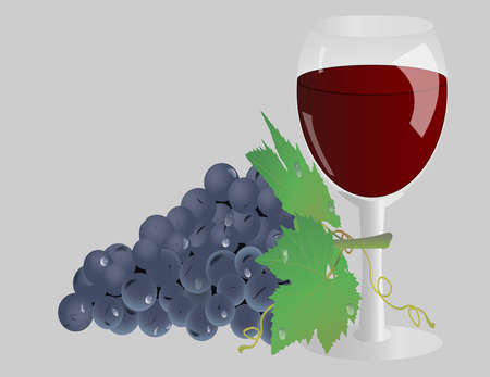 winetasting: glass of wine and grapes with leaves isolated on a gray background