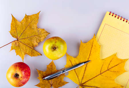 Apples and notebook, yellow fallen leaves and a silver pen. Stock Photo