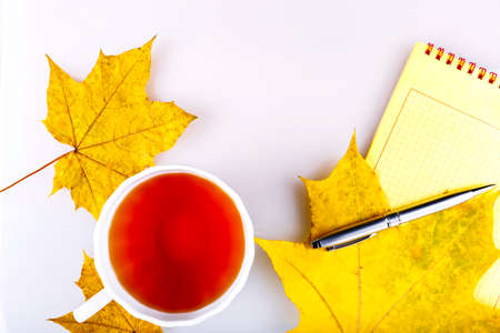 Autumn business still life, yellow notebook with silver handle and yellow leaves. Stock Photo