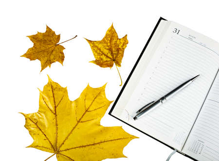 A notebook with autumn leaves, a silver pen to write notes.