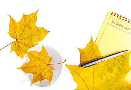 Business plan notepad,  is isolated with a white background and wedge yellow leaves. 版權商用圖片