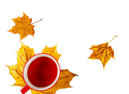 Cup drink on yellow leaves, isolated on white background.