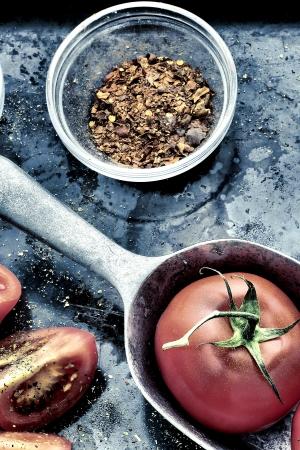 tomato vintage style Zdjęcie Seryjne