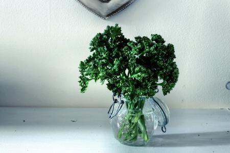 parsley in a jar - vintage style  Zdjęcie Seryjne