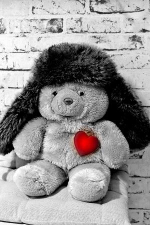 sweet teddy bear with a heart and a cap