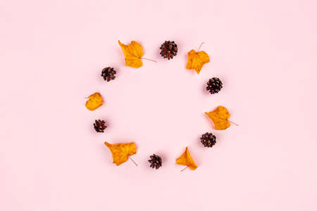 Autumn composition. Circle made of dried leaves, anise on a pink background. Fall concept. Flat lay, top view, copy space.