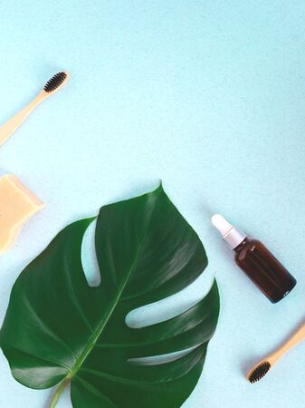 The concept of zero waste. bamboo toothbrush, solid shampoo and manstera branch. Banco de Imagens