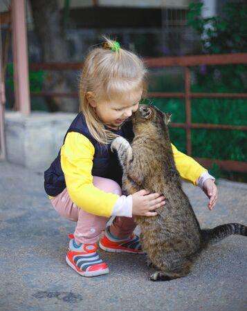 Little cute girl hugs a gray cat.