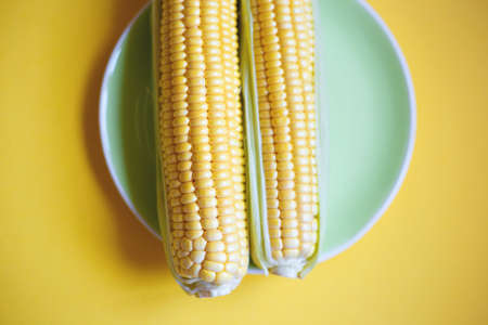 two fresh juicy local corn on a green plate on a yellow background.