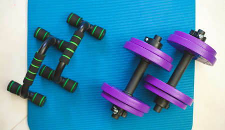 two purple dumbbells on a green mat. sports accessories.