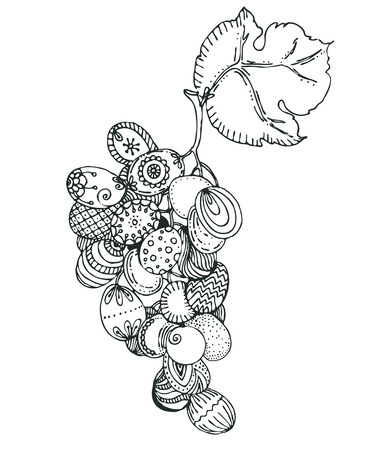 design drawing: Hand drawn doodle grapes. sketch for adult antistress coloring page, tattoo, poster, print, t-shirt, invitation, cards, banners, calendars Illustration