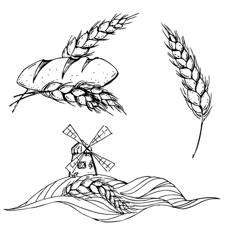 white bread: hand drawn ink windmill, bread, corn on white background Illustration