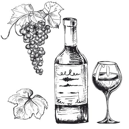 Hand getrokken inktillustratie met druiven takje, glas wijn, druiven. vector eps 10. Stockfoto - 55486244