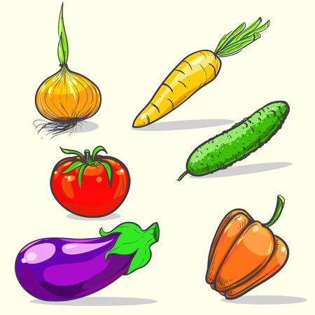 Disegnata a mano illustrazione vettoriale con le verdure. vettoriale eps 10 Archivio Fotografico - 57266195