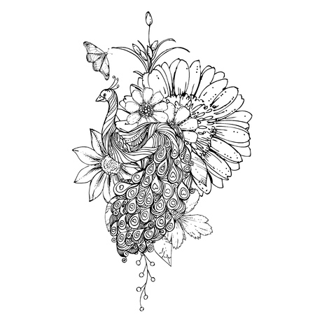 peafowl: ink doodle peacock and flowers on white background. Coloring page -  design for adults, poster, print, t-shirt, invitation