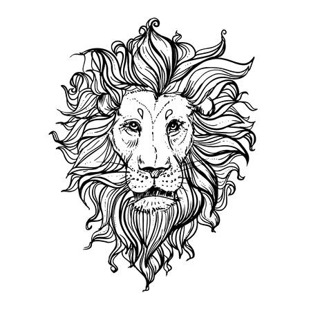 illustration of doodle lion. sketch. Vektorové ilustrace