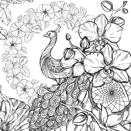 hand drawn ink doodle peacock, flowers, orchid on white background. design for adults, poster, print, t-shirt, flyers. sketch. vector eps 8.