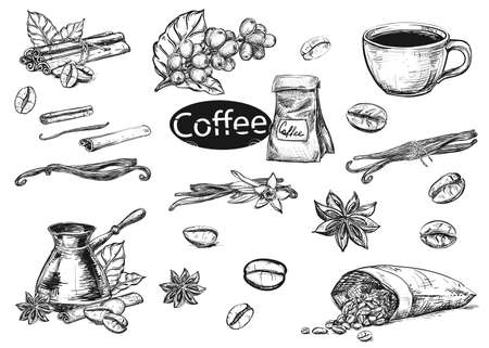 Hand drawn sketch black and white coffee set. Vector illustration of coffee cup, beans, leaf, branch, vanilla, turka, cinnamon. Elements in graphic style menu.