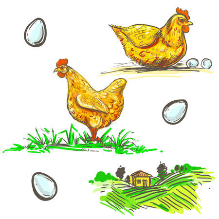 hand drawn illustration with color farm and chicken and egg sketches. vector set Illustration