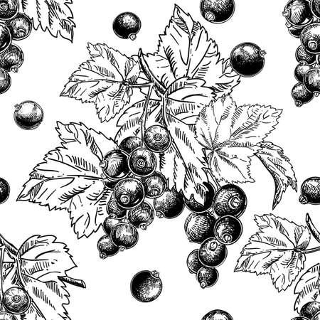 Detailed hand drawn black and white seamless pattern of berry, cane fruit. Vektorgrafik