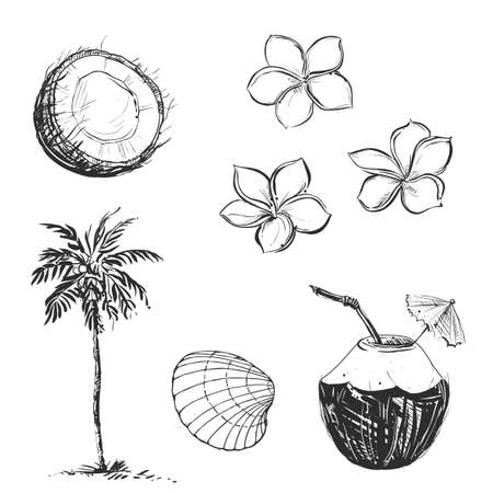 Hand drawn illustration set of palm and coconut, umbrella, milk. sketch.