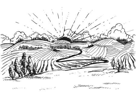 Detailed hand drawn ink black and white illustration of grapevine, vineyard field. sketch. Vector. Elements in graphic style label, card, sticker, menu, package.