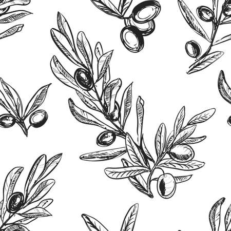 Detailed hand drawn black and white illustration seamless pattern of olive branch, leaf. sketch. Vector. Elements in graphic style label, card, sticker, menu, package. 矢量图像
