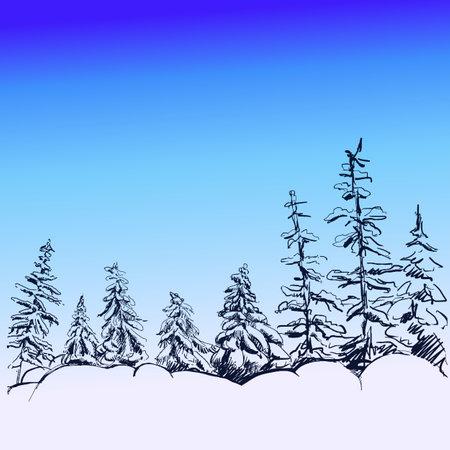 Hand drawn sketch vintage spruce forest design, fir. Vector illustration. Elements in graphic style label, card, sticker, menu, package.