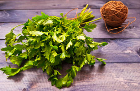 tangle: Bunch of fresh parsley and rope tangle