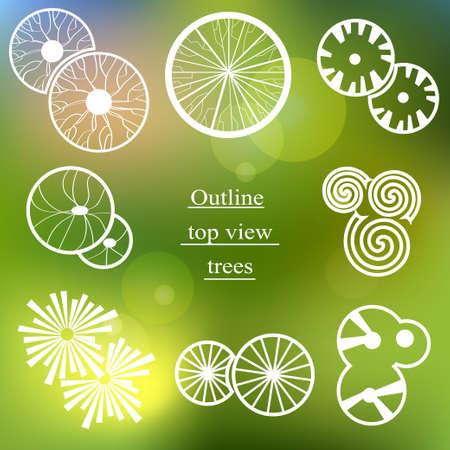 bovenaanzicht plant: Schets set bovenaanzicht bomen. Gebruik voor landschapsontwerp Stock Illustratie