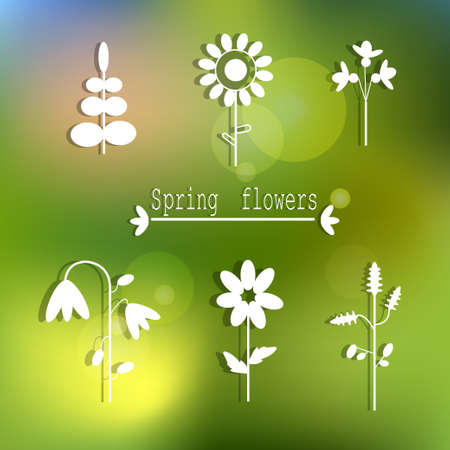 floral spring set of white flowers on the blurred backgroun vector