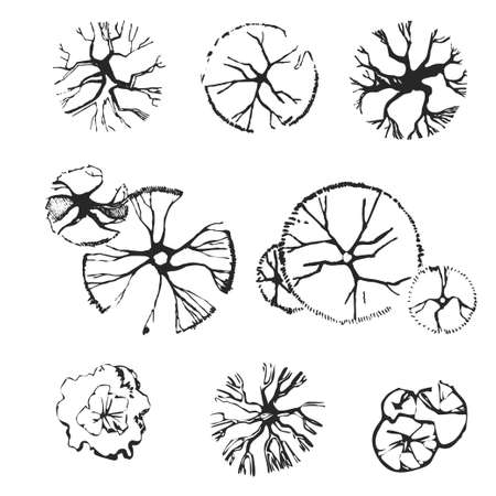 손은 상위 뷰 나무의 집합 그려. 조경 설계에 사용