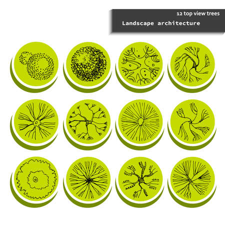 Top view vector set of different trees badges.Hand drawn illustration for landscape design, plan, maps.Collection of tree symbols isolated on the white background.