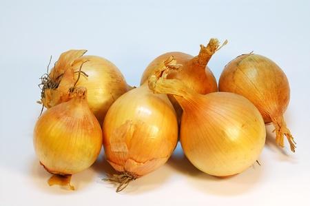 Nahaufnahme von sechs Zwiebeln frisch und sauber.