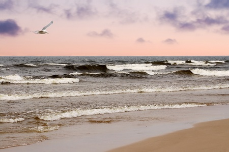 The beach on the Baltic Sea in the evening. Stock Photo