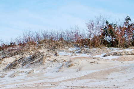 The beach on the Baltic Sea in the winter