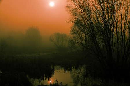 Dichter Nebel an einem Fr�hlingsmorgen