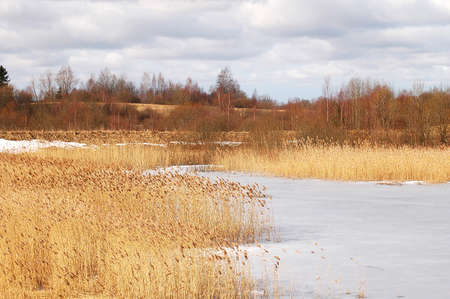 A cane and a frozen lake in early spring Stock Photo