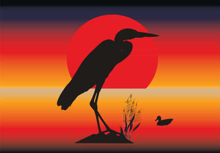 Vector silhouettes of heron and duck against an abstract background Vector