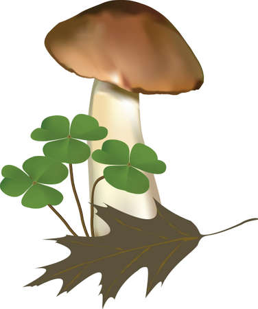 Vector illustration of a mushroom with a dry leaf and plants. The picture was created using meshes and gradients. Illustration