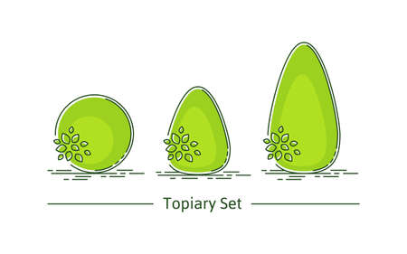 A set of boxwood topiary of different forms. Vector illustration in modern style