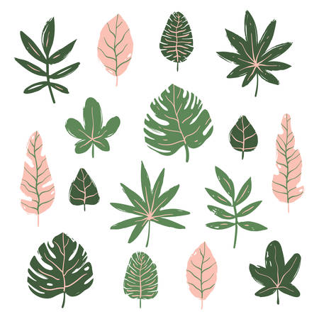 Set of tropical leaves. Hand drawn vector elements Ilustração