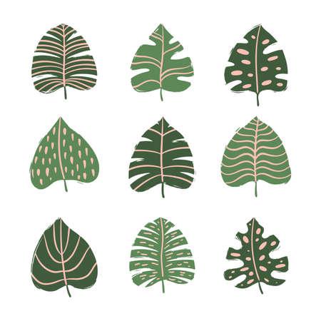 Set of tropical leaves. Hand drawn vector elements Illusztráció