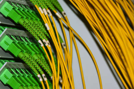 Fiber optic cables on the patch panel in the telecommunications cabinet transmit data on the TCP IP protocol