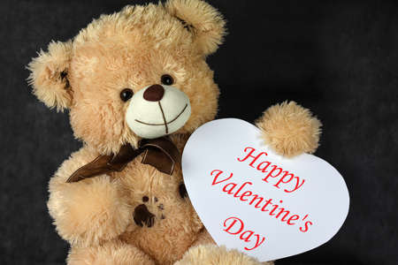 Bear Teddy with a heart shaped frame loves you on Valentines Day Imagens