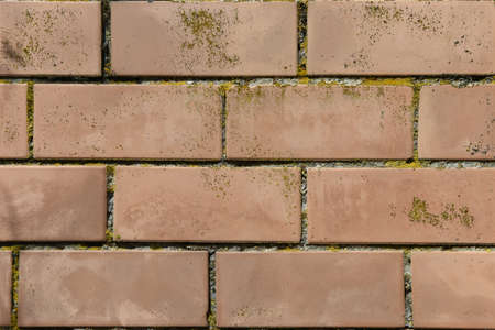 Background texture colored wall old facing brick