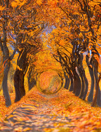 Illustration of an orange autumn trail in a maple park.