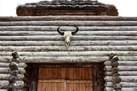 Skull of a bull on a wooden wall of an old fortress. Фото со стока