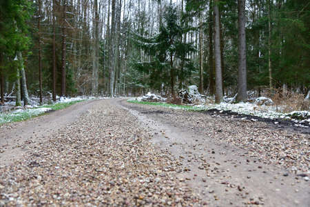 Curved road in the winter forest. Фото со стока - 137796999